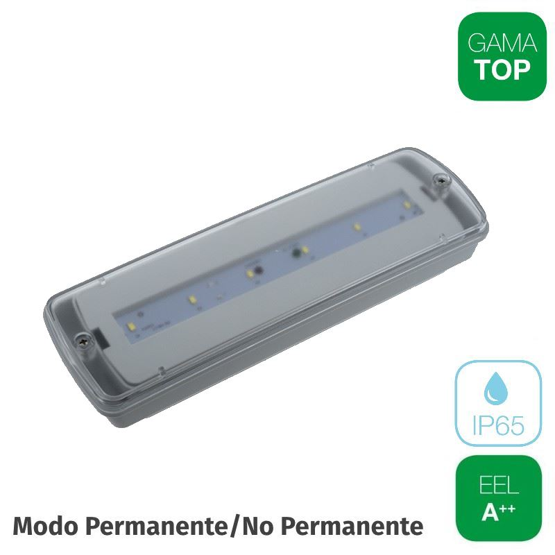 Emergencia LED 150lm 2w Superficie IP65